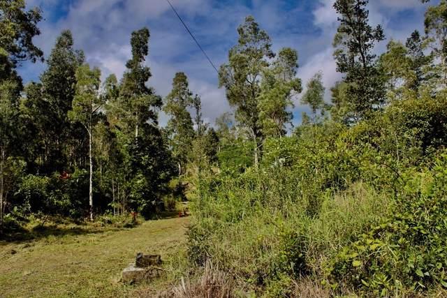 Uhini Ana Rd (Road 1), Mountain View, HI 96771 (MLS #648397) :: Aloha Kona Realty, Inc.