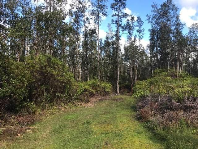 16-1959 Hopue Rd (Road 3), Mountain View, HI 96771 (MLS #648443) :: Aloha Kona Realty, Inc.
