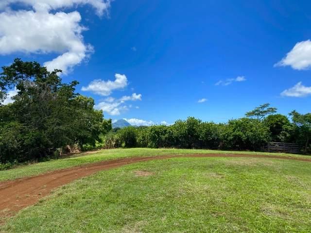 Kaumualii Hwy, Kalaheo, HI 96741 (MLS #648470) :: LUVA Real Estate