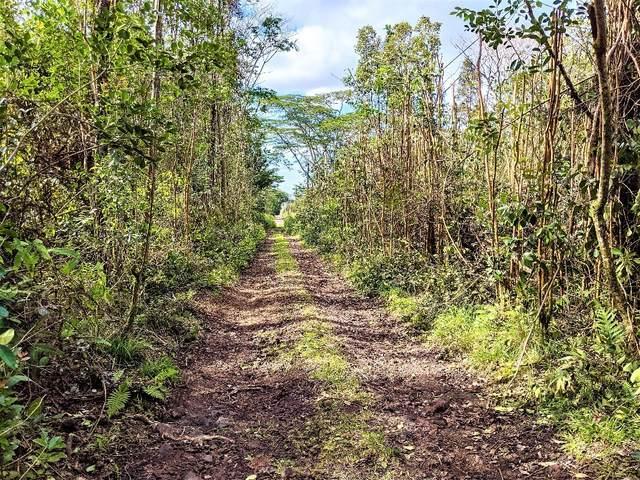 Sandalwood Ct, Kurtistown, HI 96760 (MLS #648540) :: Aloha Kona Realty, Inc.