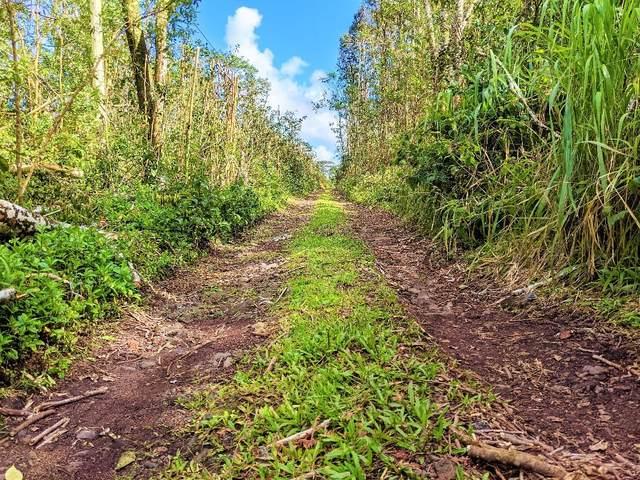 Sandalwood Ct, Kurtistown, HI 96760 (MLS #648541) :: Aloha Kona Realty, Inc.