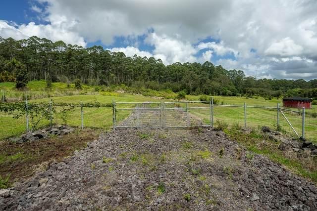 1020 Kulaloa Road, Hilo, HI 96720 (MLS #648598) :: Aloha Kona Realty, Inc.