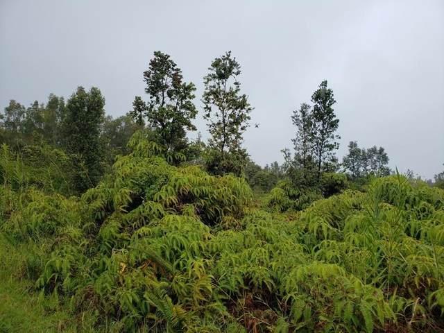 Uhini Ana Rd (Road 1), Mountain View, HI 96771 (MLS #648701) :: Aloha Kona Realty, Inc.