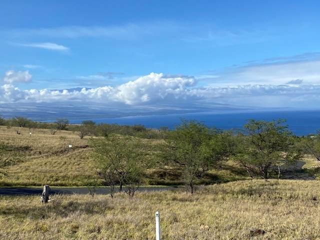 59-638 Hoopai Trail, Kamuela, HI 96743 (MLS #648750) :: Aloha Kona Realty, Inc.