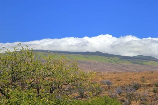 Haia St, Waikoloa, HI 96738 (MLS #648772) :: Iokua Real Estate, Inc.