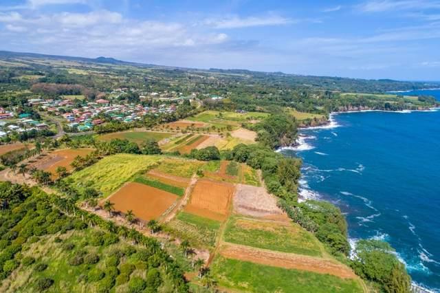 27-109 Kopilimai Road, Papaikou, HI 96781 (MLS #648861) :: Corcoran Pacific Properties