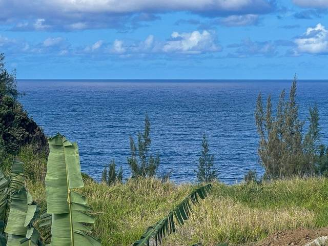 32-2619 Pali Ku Pl, Ninole, HI 96780 (MLS #649099) :: Corcoran Pacific Properties