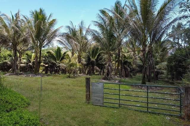 23RD AVE (NAUPAKA), Keaau, HI 96749 (MLS #649168) :: Aloha Kona Realty, Inc.