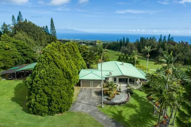 55-1108 Kaauhuhu Homestead Rd, Hawi, HI 96719 (MLS #649195) :: Corcoran Pacific Properties