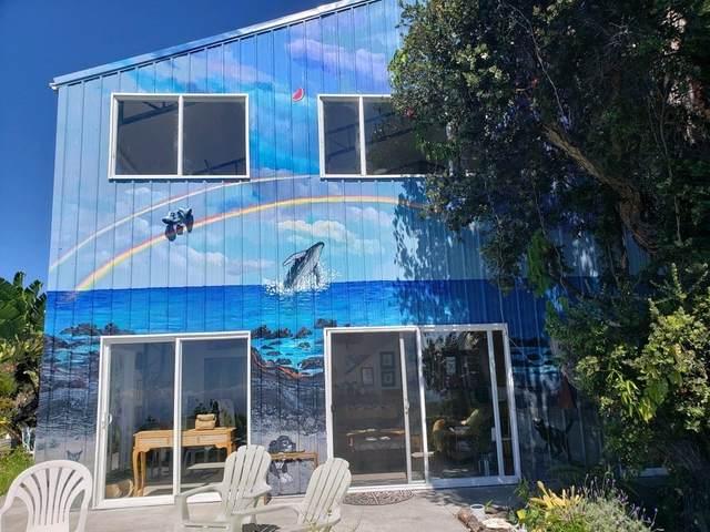 92-1885 Princess Kaiulani Blvd, Ocean View, HI 96737 (MLS #649216) :: Corcoran Pacific Properties