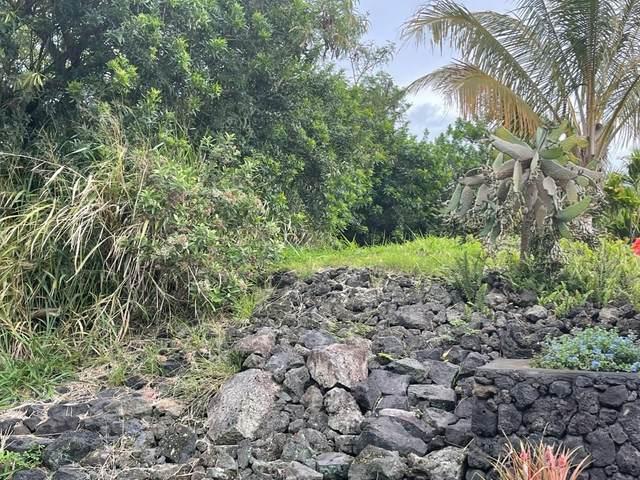 94-1670 Lewa Nuu St, Naalehu, HI 96772 (MLS #649571) :: Steven Moody