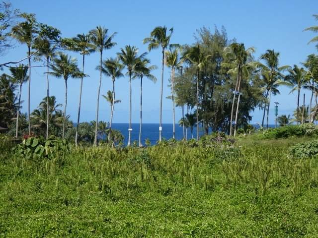 N Popaa St, Pahoa, HI 96778 (MLS #649644) :: Corcoran Pacific Properties