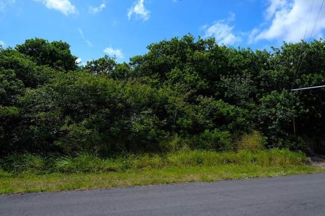 Kilo Moana Pl, Naalehu, HI 96772 (MLS #649773) :: Corcoran Pacific Properties