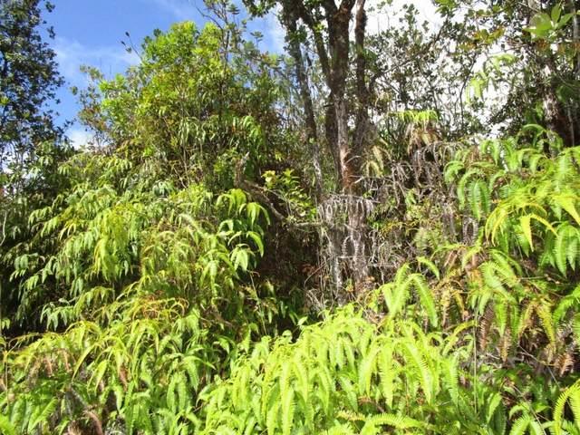 Hopue Rd (Road 3), Mountain View, HI 96771 (MLS #649810) :: Hawai'i Life