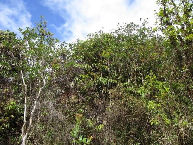 Hopue Rd (Road 3), Mountain View, HI 96771 (MLS #649811) :: Hawai'i Life