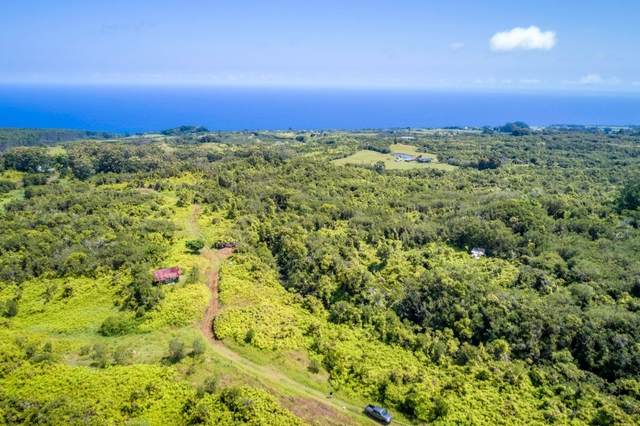 Address Not Published, Papaaloa, HI 96780 (MLS #649820) :: Aloha Kona Realty, Inc.