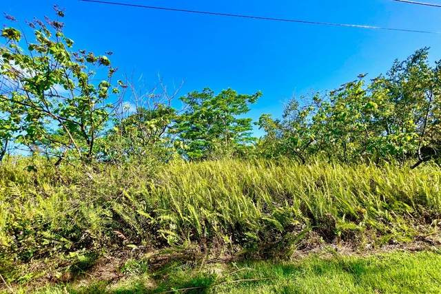 Puulena St, Pahoa, HI 96778 (MLS #649832) :: Corcoran Pacific Properties