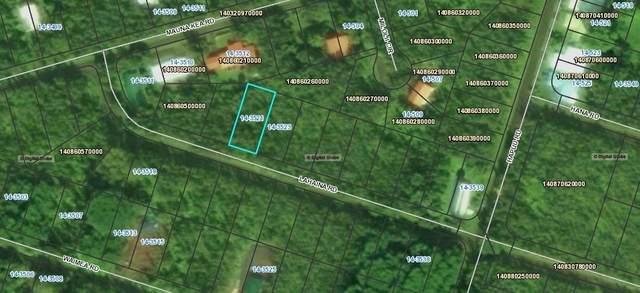 Lahaina St, Pahoa, HI 96778 (MLS #649851) :: Corcoran Pacific Properties