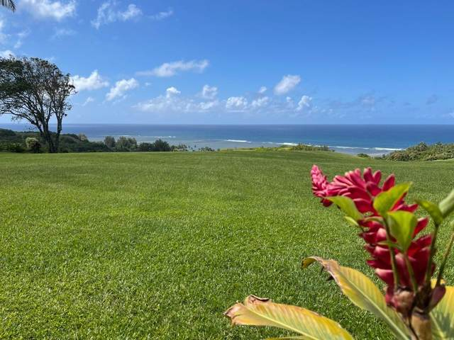 1 Anini Vista Dr, Kilauea, HI 96754 (MLS #649916) :: Kauai Exclusive Realty