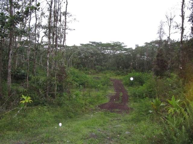 Mauna Kea Rd, Pahoa, HI 96778 (MLS #650008) :: Hawai'i Life