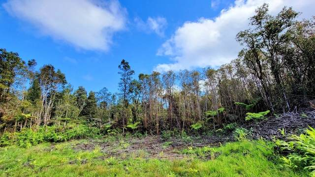 18-2059 Hapuu Nani - Rd 2, Volcano, HI 96785 (MLS #650144) :: Aloha Kona Realty, Inc.