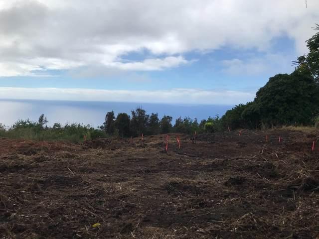 87-2455 Hawaii Belt Road, Captain Cook, HI 96704 (MLS #650163) :: Steven Moody