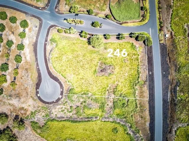 81-6506 Mamaka Pl, Captain Cook, HI 96750 (MLS #650208) :: Iokua Real Estate, Inc.