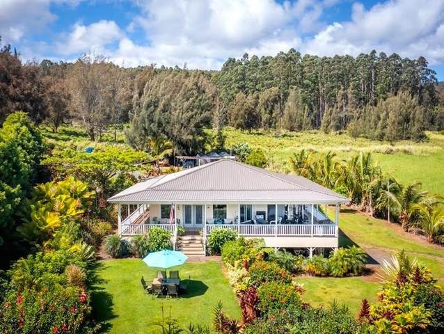 41-467 Hawaii Belt Rd, Ookala, HI 96776 (MLS #650300) :: Corcoran Pacific Properties