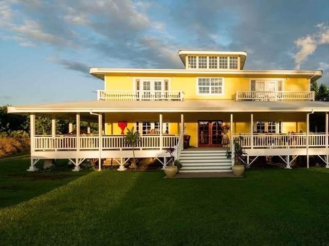 94-2152 South Point Rd, Naalehu, HI 96772 (MLS #650343) :: LUVA Real Estate