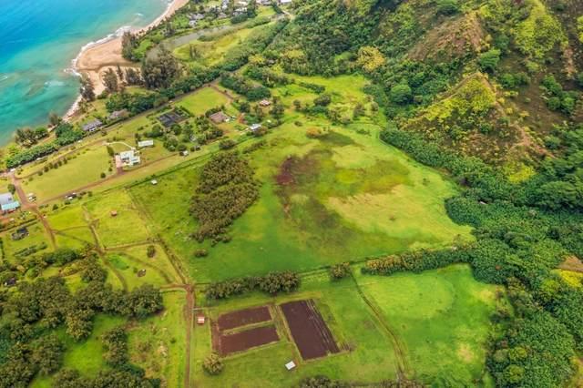 Kuhio Hwy, Hanalei, HI 96714 (MLS #650358) :: Kauai Exclusive Realty