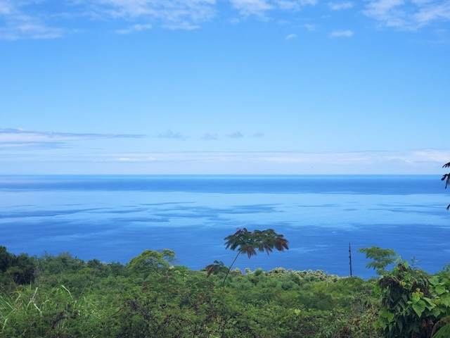 Old Goverment Rd., Captain Cook, HI 96704 (MLS #650376) :: Aloha Kona Realty, Inc.