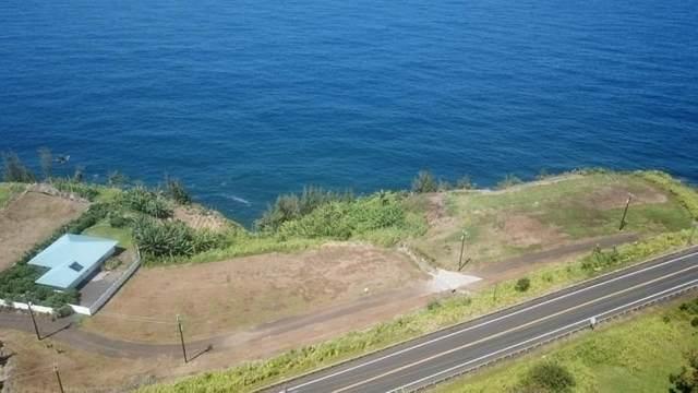 Hawaii Belt Rd, Ninole, HI 96780 (MLS #650448) :: Aloha Kona Realty, Inc.