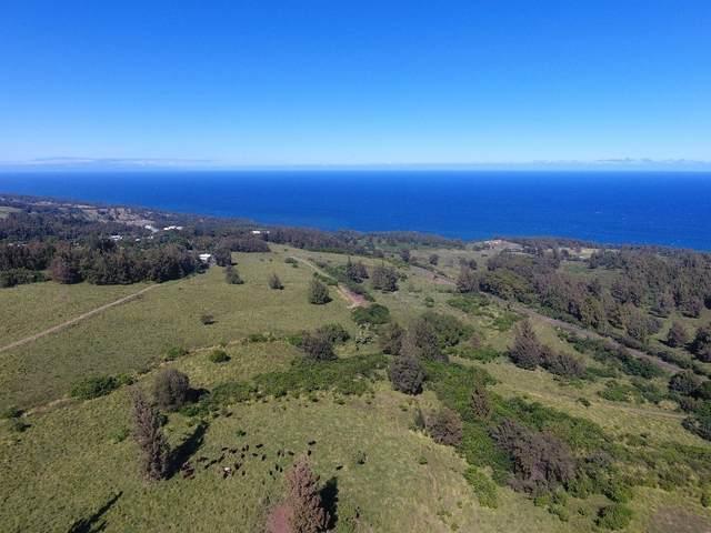 Maile St, Honokaa, HI 96727 (MLS #650468) :: Corcoran Pacific Properties