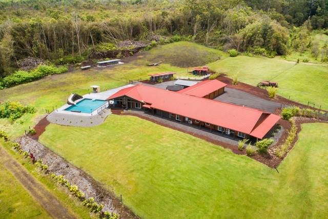 1009 Kulaloa Rd, Hilo, HI 96720 (MLS #650484) :: LUVA Real Estate