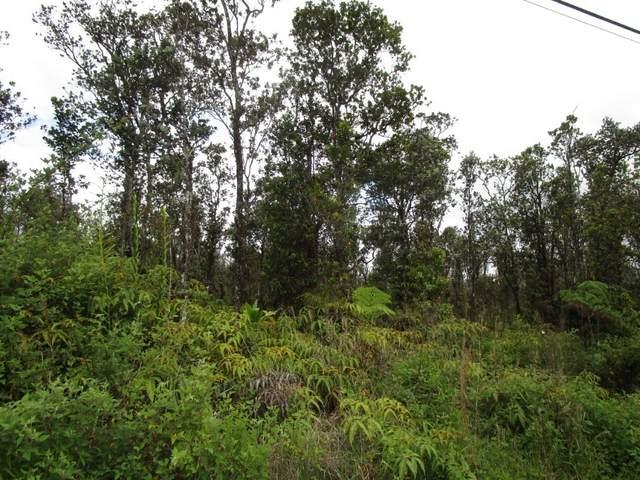 Uluhemalu Rd, Volcano, HI 96785 (MLS #650614) :: Corcoran Pacific Properties