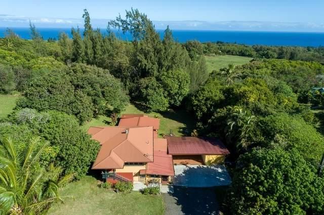 55-492 Ilina Rd, Hawi, HI 96719 (MLS #650629) :: LUVA Real Estate