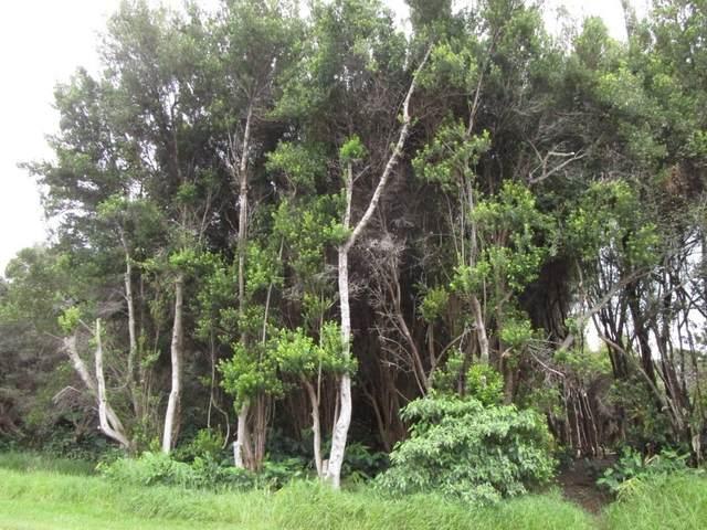 Pukeawe Cir, Hawaii National Park, HI 96718 (MLS #650632) :: Aloha Kona Realty, Inc.