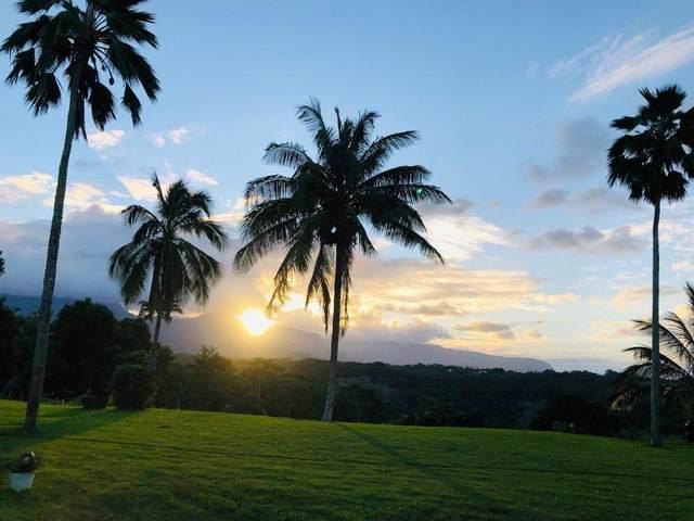 5-3000 Kuhio Hwy, Kilauea, HI 96754 (MLS #650653) :: Kauai Exclusive Realty
