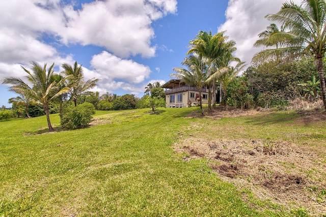 13-1209 Kaueleau Rd, Pahoa, HI 96778 (MLS #650706) :: LUVA Real Estate