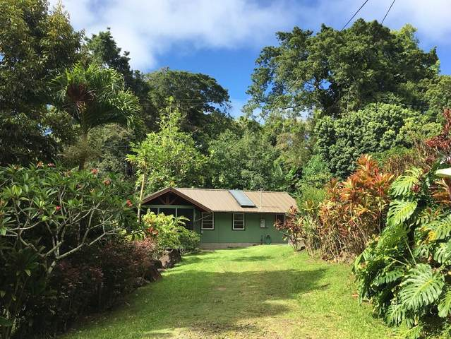 53-4367 Akoni Pule Hwy, Kapaau, HI 96755 (MLS #650770) :: Corcoran Pacific Properties