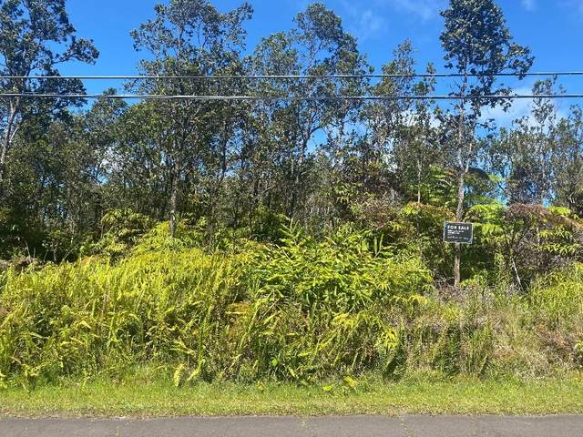 Alii Kane St, Volcano, HI 96785 (MLS #650825) :: Aloha Kona Realty, Inc.