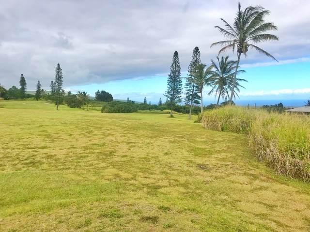 Awa Pae Lp, Naalehu, HI 96772 (MLS #650856) :: Aloha Kona Realty, Inc.