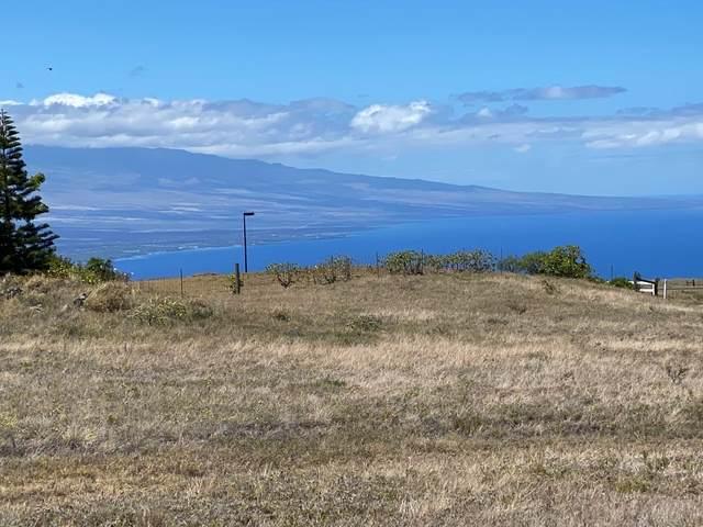 59-404 Kanaloa Dr, Kamuela, HI 96743 (MLS #650898) :: Aloha Kona Realty, Inc.