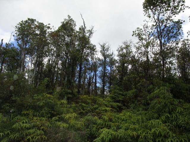 Jungle King Ave, Volcano, HI 96785 (MLS #650923) :: Team Lally