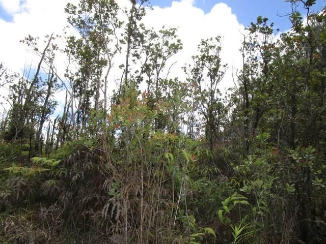 Ohialani Rd, Volcano, HI 96785 (MLS #650925) :: Team Lally