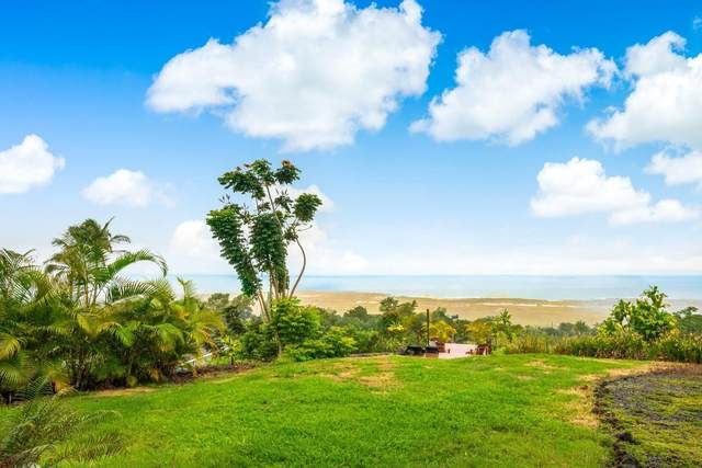 73-4635 Kohanaiki Rd, Kailua-Kona, HI 96740 (MLS #650934) :: Hawai'i Life
