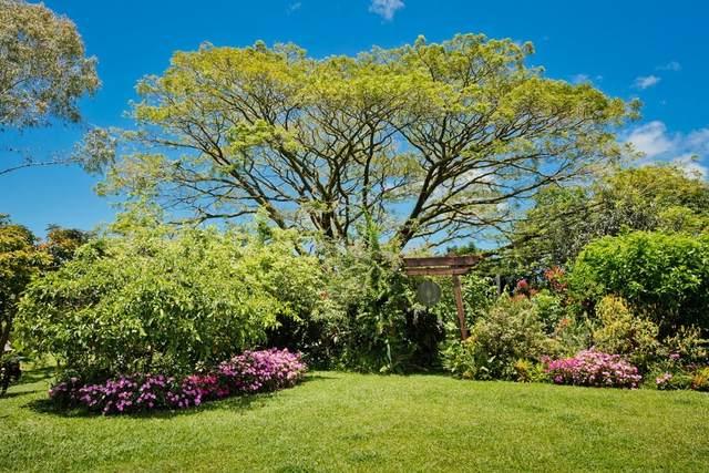 20 Hoaka Rd, Hilo, HI 96720 (MLS #650945) :: Hawai'i Life