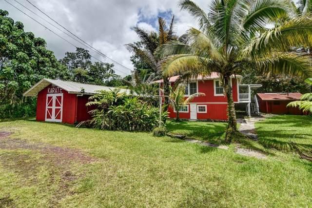 15-2846 Pahoa Village Rd, Pahoa, HI 96778 (MLS #651006) :: Corcoran Pacific Properties