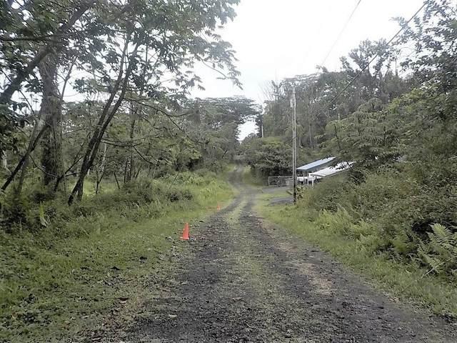 Seadrift Rd, Pahoa, HI 96778 (MLS #651152) :: Team Lally