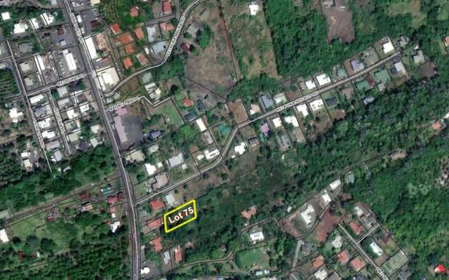 81-6324-A Mamalahoa Hwy, Captain Cook, HI 96704 (MLS #651156) :: LUVA Real Estate